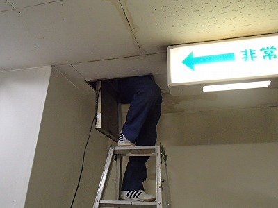 天井裏確認