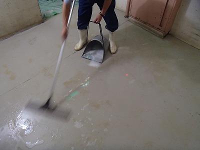 EVホール清掃(1)